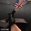 cricketbat_2