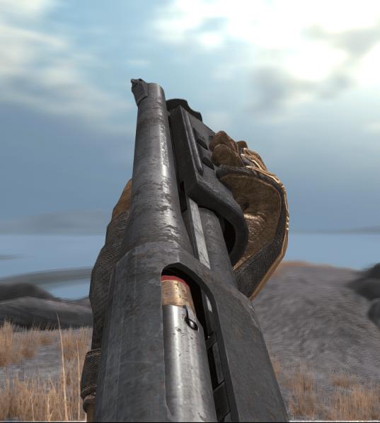 shotgun_03